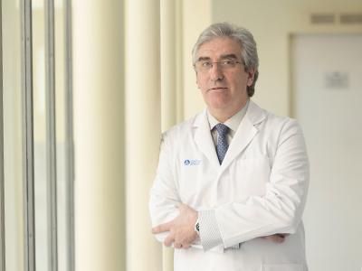 Dr. Rincón Velazquez