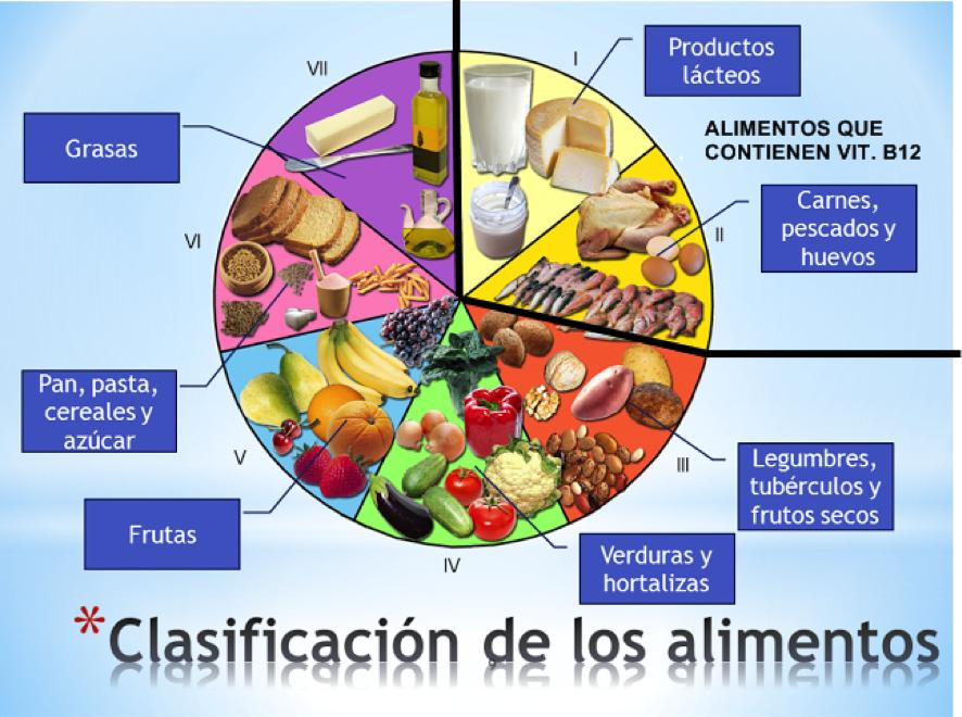 clasificacion alimentos