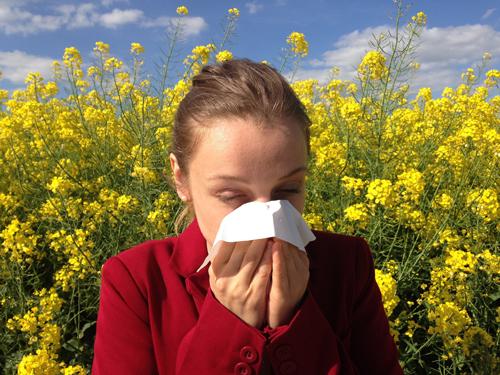 alergia17