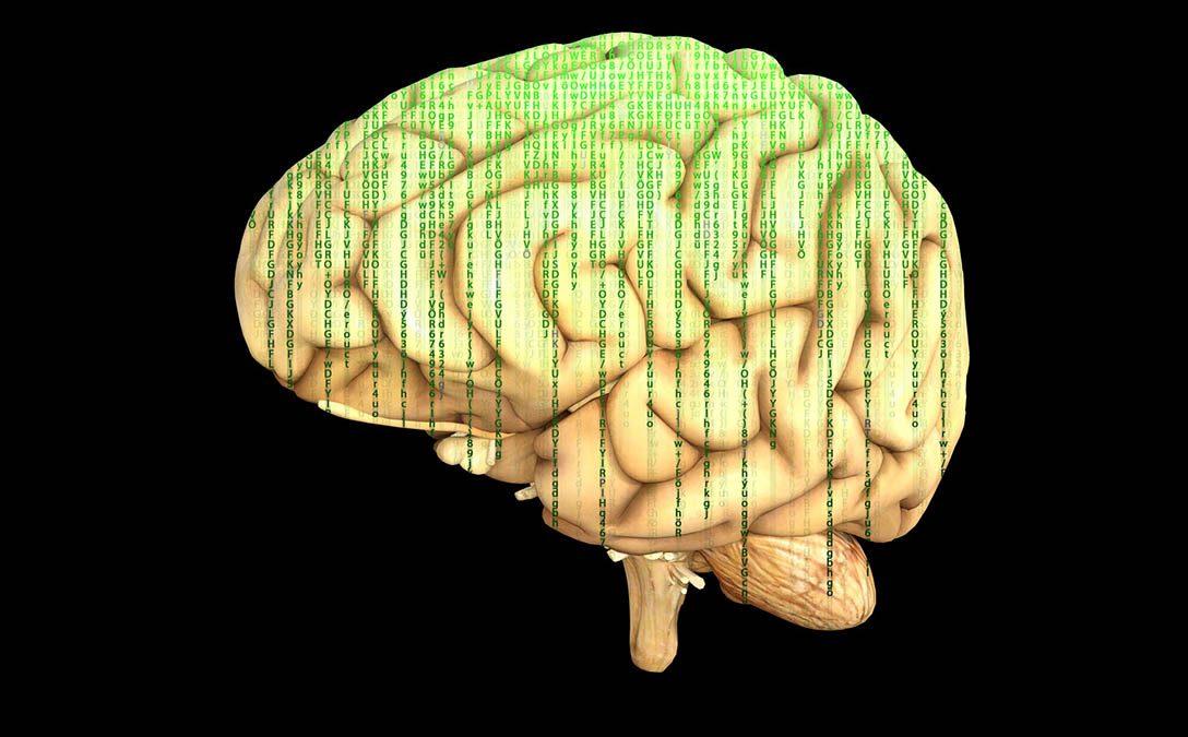 brainictus