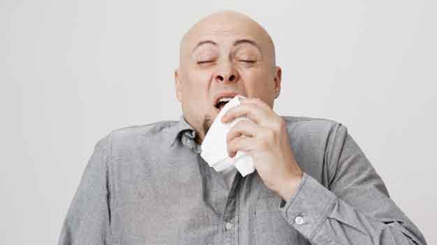 estornudo hsnr