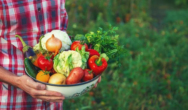Verduras Frutas Alimentos funcionales